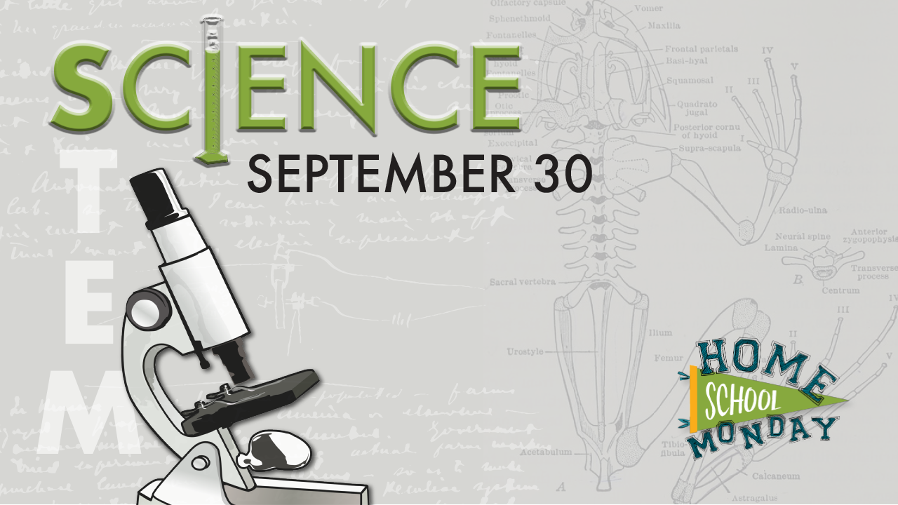 Homeschool Monday: Science