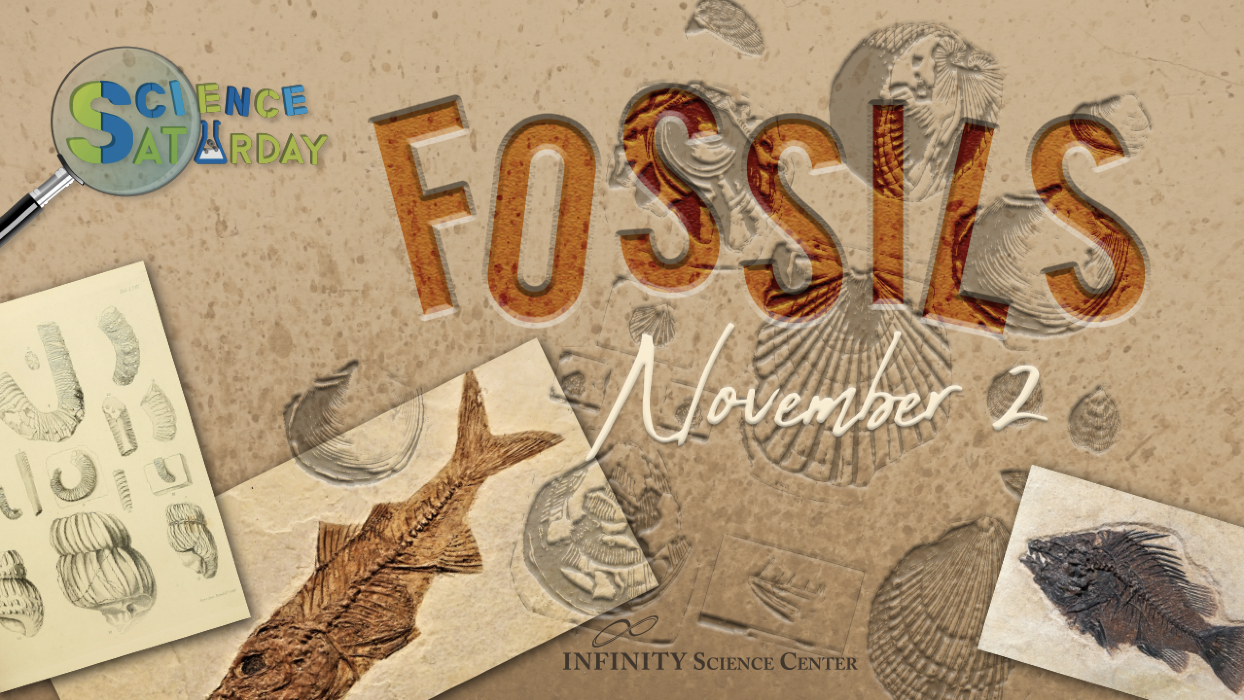 Science Saturday: Fossils