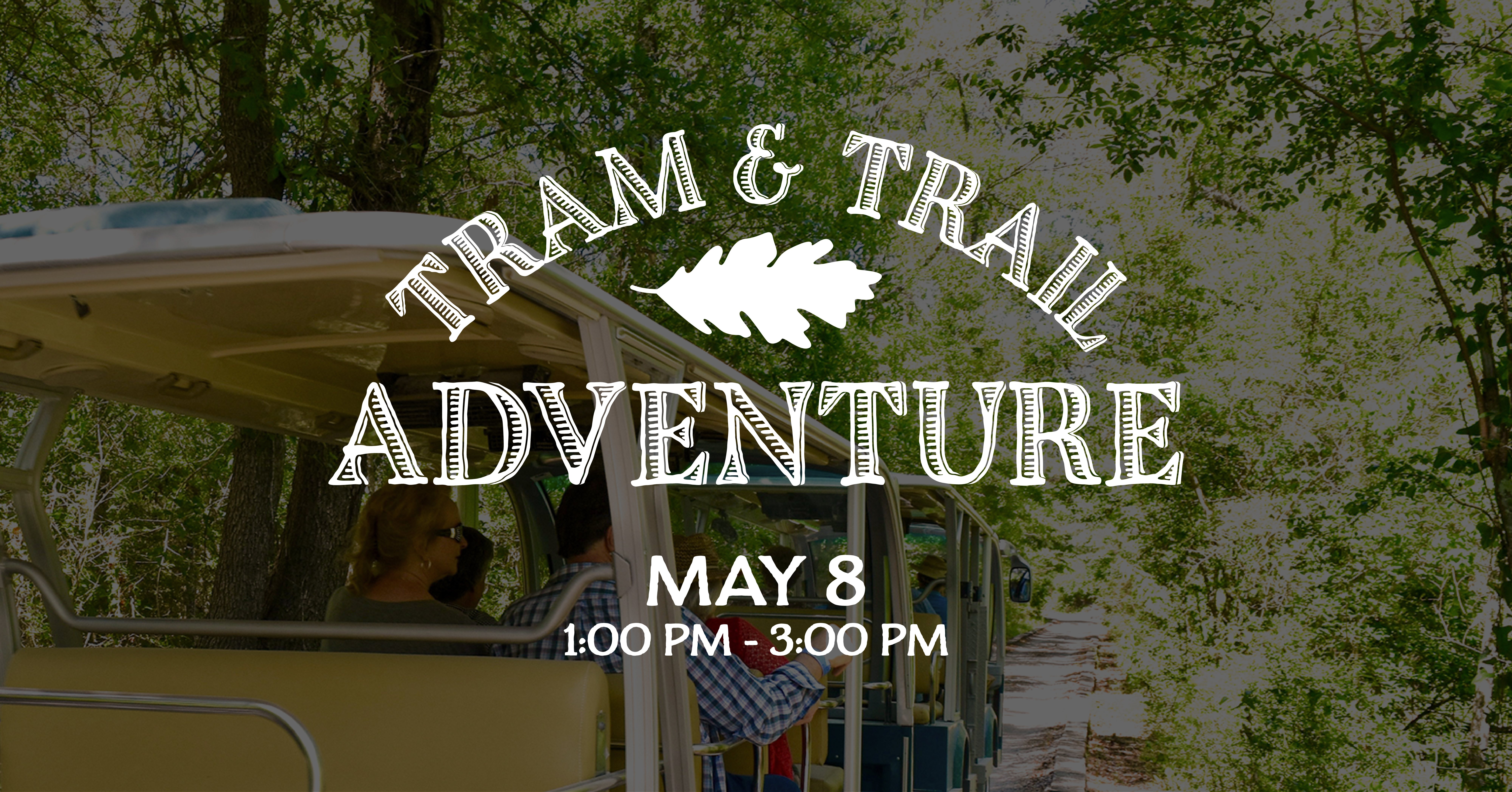 Tram & Trail Adventure